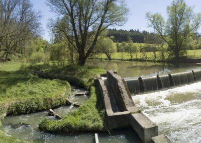 Fischtreppe Neckarburg